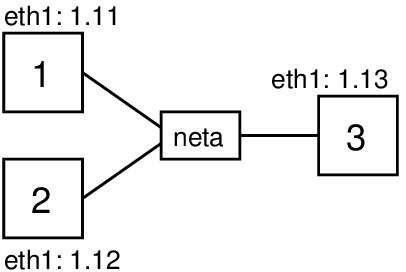 Network topology for testing address spoofing